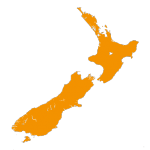 NZ-icon